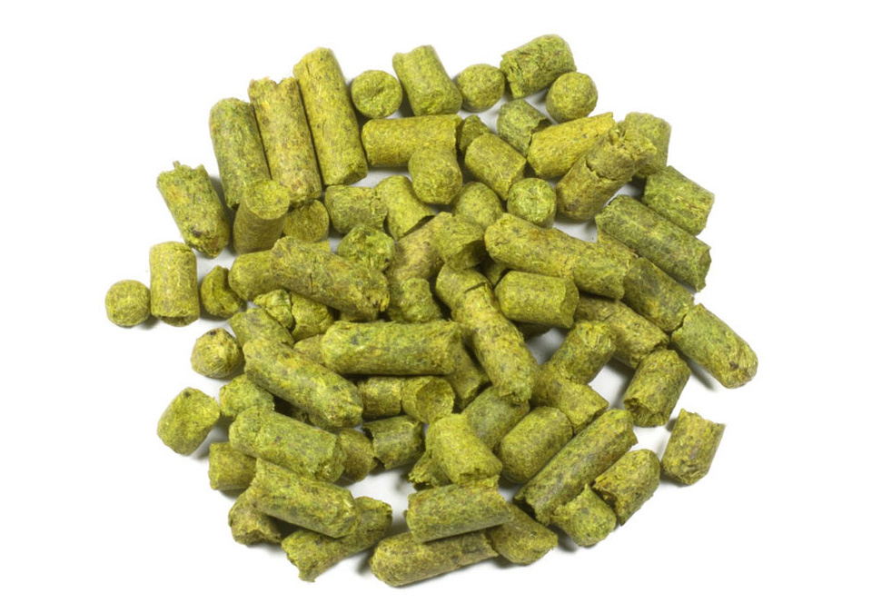 East Kent Goldings Hops 100g